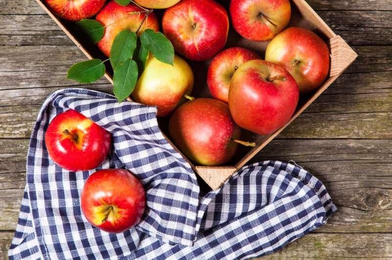 Поздравления на Яблочный спас: красивые открытки и стихи ... | 530x800