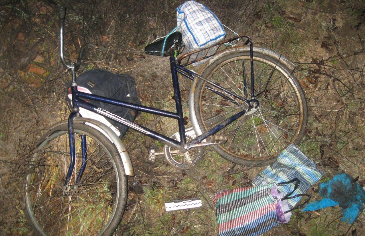 В Киеве насмерть сбили двух велосипедистов