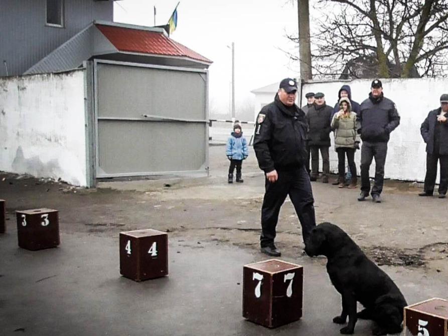 Нашли самое главное - у украинских полицейских Крыма появился свой собачник