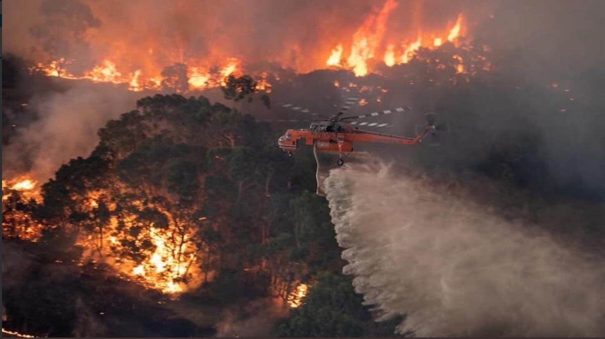 Австралия тонет в огне: что известно о трагедии сегодня - фото 1