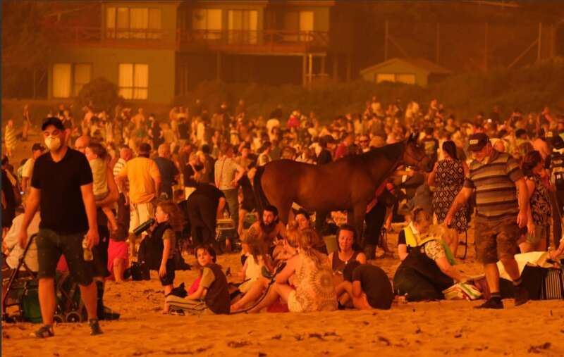 Австралия тонет в огне: что известно о трагедии сегодня - фото 3