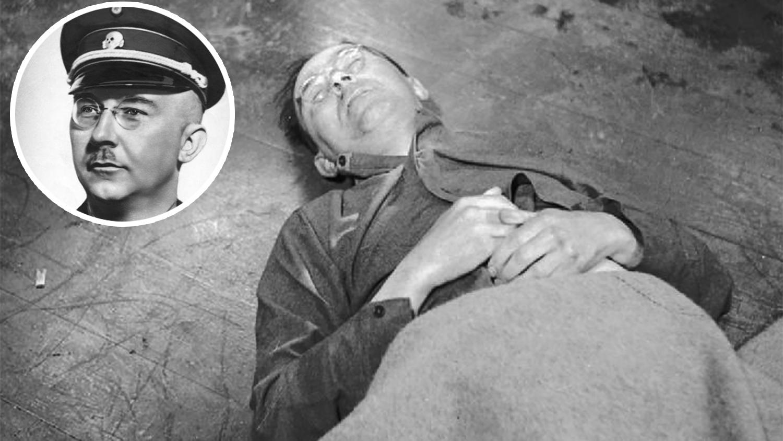 В Британии нашли документ, благодаря которому бежал Генрих Гиммлер - фото 2