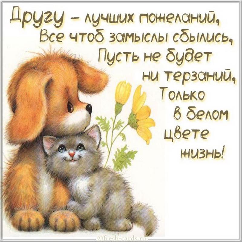 vechnaya druzhba - Найти песню как хорошо что есть друзья