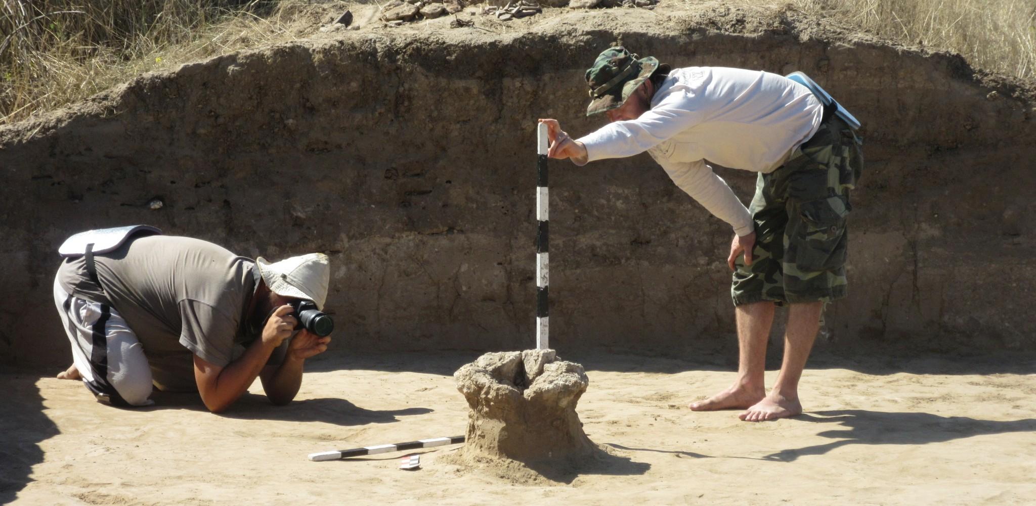 Археологи и собачки: какой сегодня праздник и день ангела 15 августа - фото 2