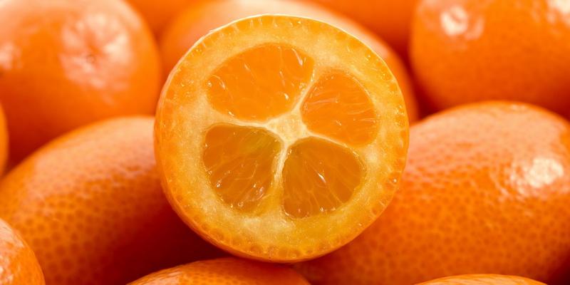 Как выглядит фрукт