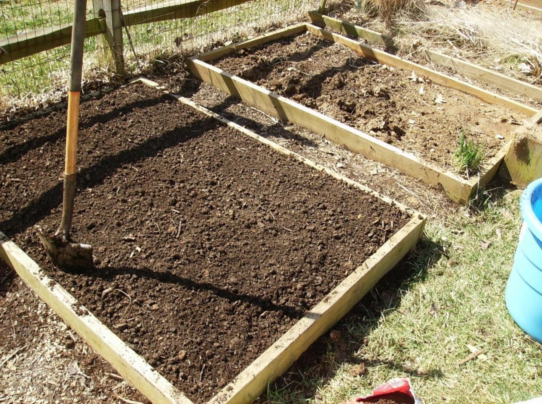 Как подготовить почву для посадки растений после зимы - фото 3