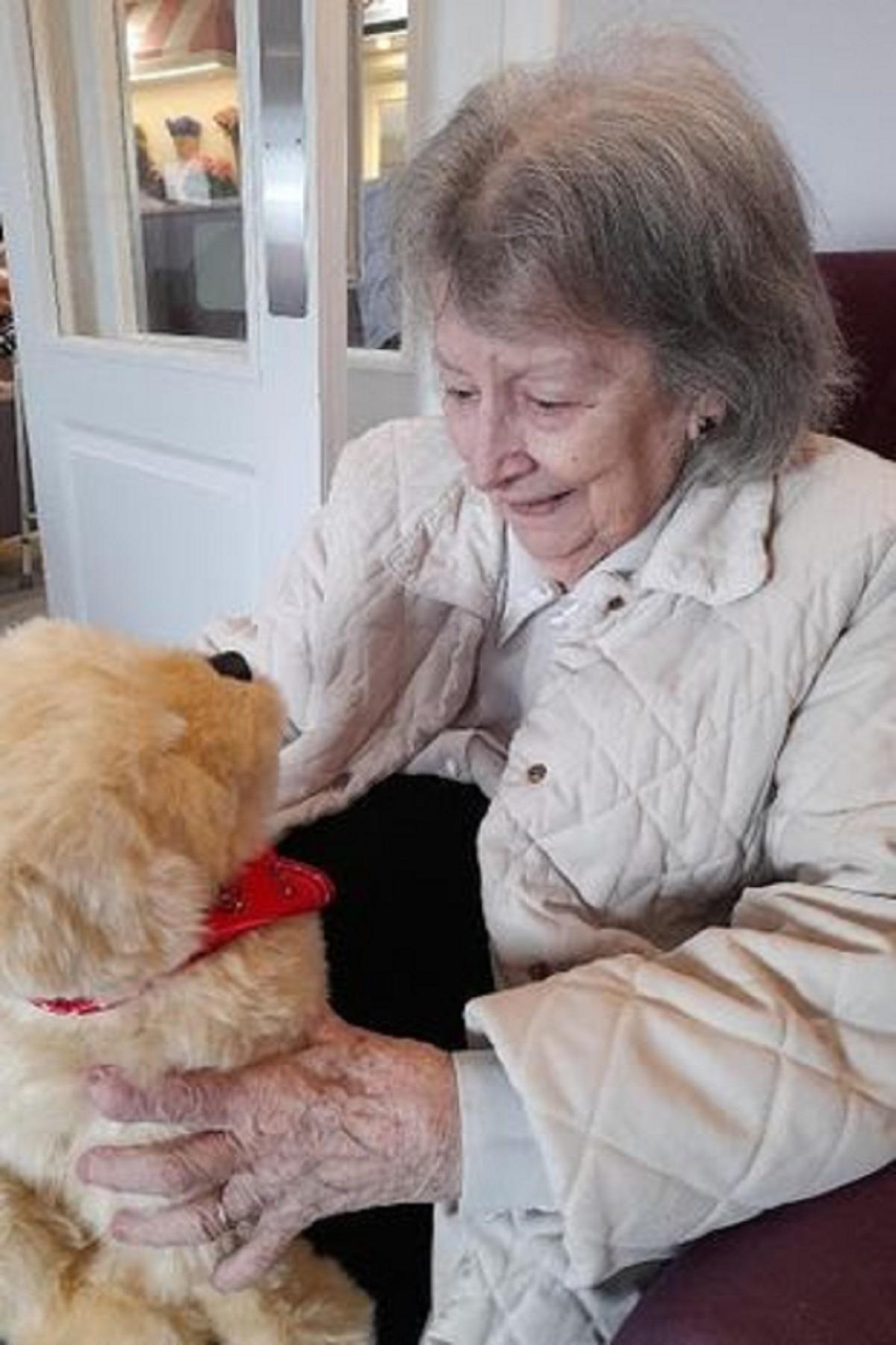 В США собаки-роботы помогают жителям домов престарелых - фото 1