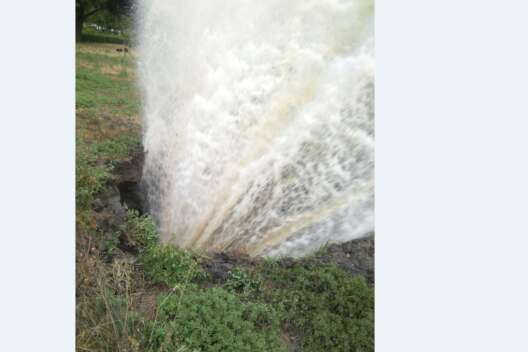 На столичной Русановке из газона забил несанкционированный фонтан (видео)-1200x800