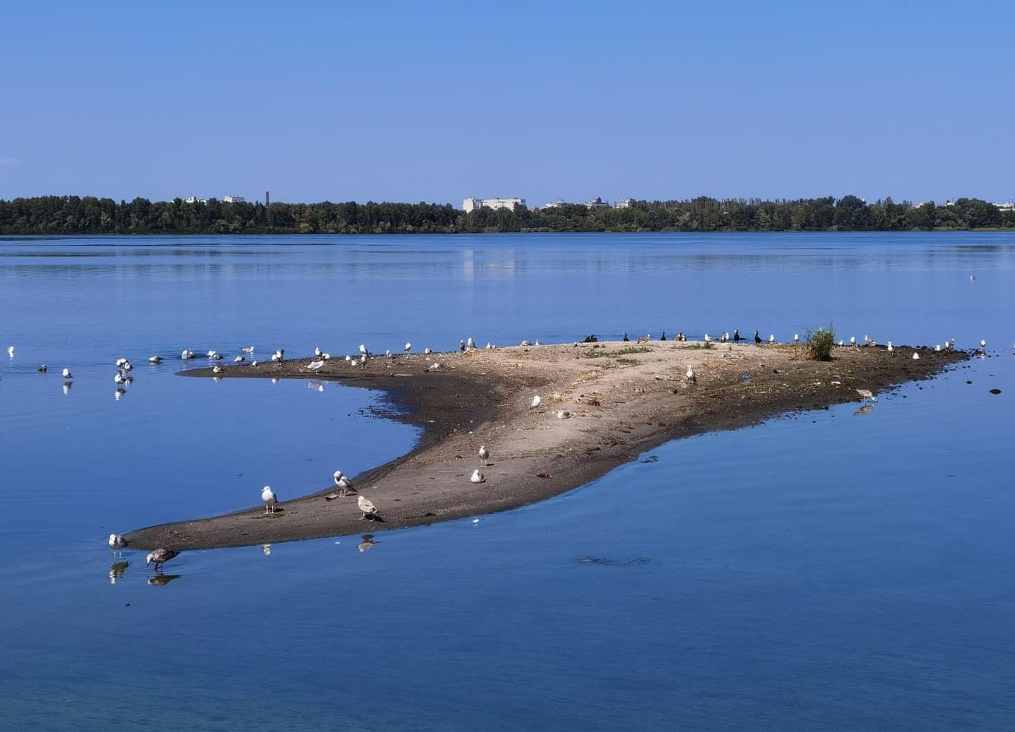 В Днепре посреди реки неожиданно вырос остров – фото