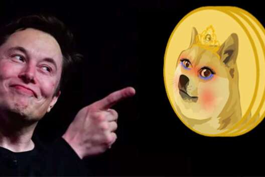 Favorite Musk, cryptocurrency Wifedoge skyrocketed by 3000% in just one day - 1200x800